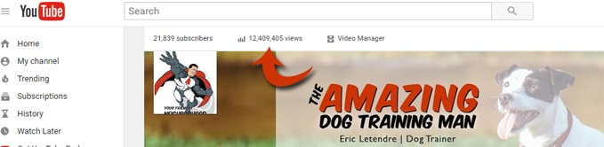 Eric Letendre Dog Training YouTube