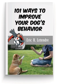 Free Dog Training Report