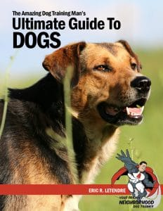ultimateguidetodogs