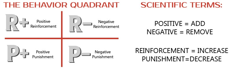 Dog Training Behavior Quadrant